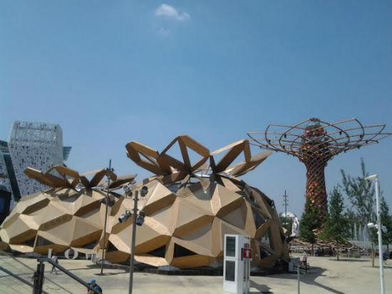 Expo 2y