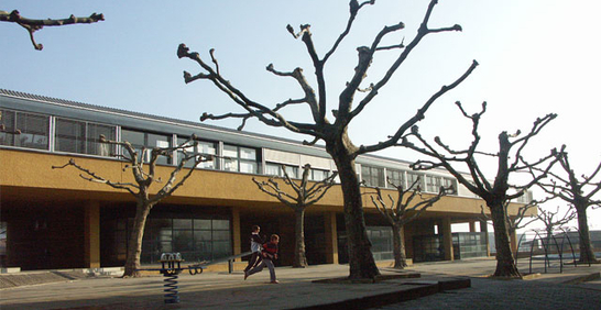 stabio-scuole